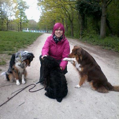 CC_dogs